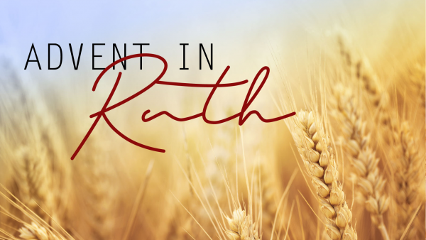 Advent in Ruth: Finding Favor Image